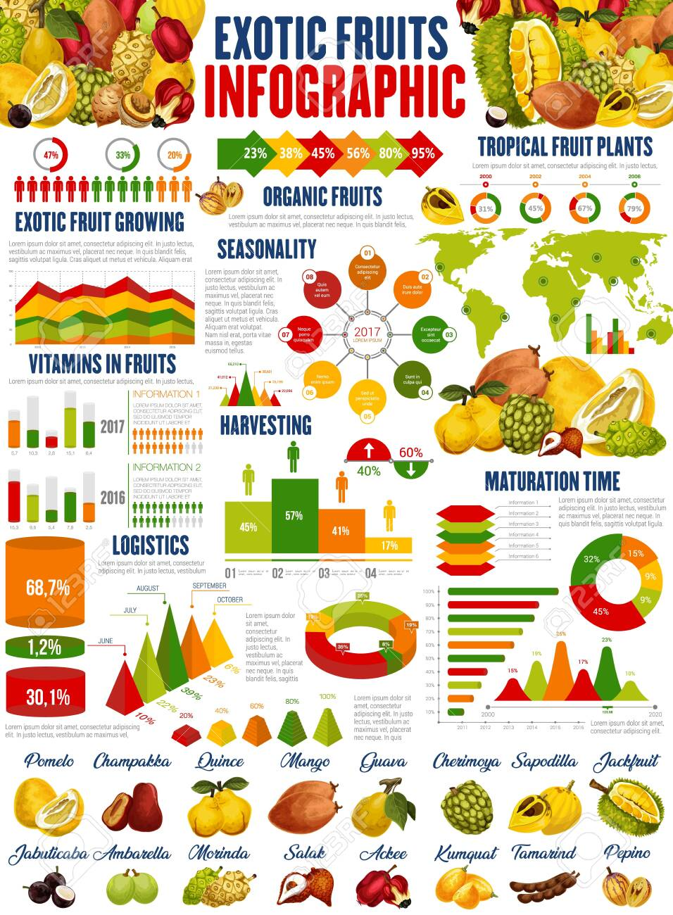 Exotic Fruits Vector Infographics Growing Harvesting And Vitamins Royalty Free Cliparts Vectors And Stock Illustration Image 138599354