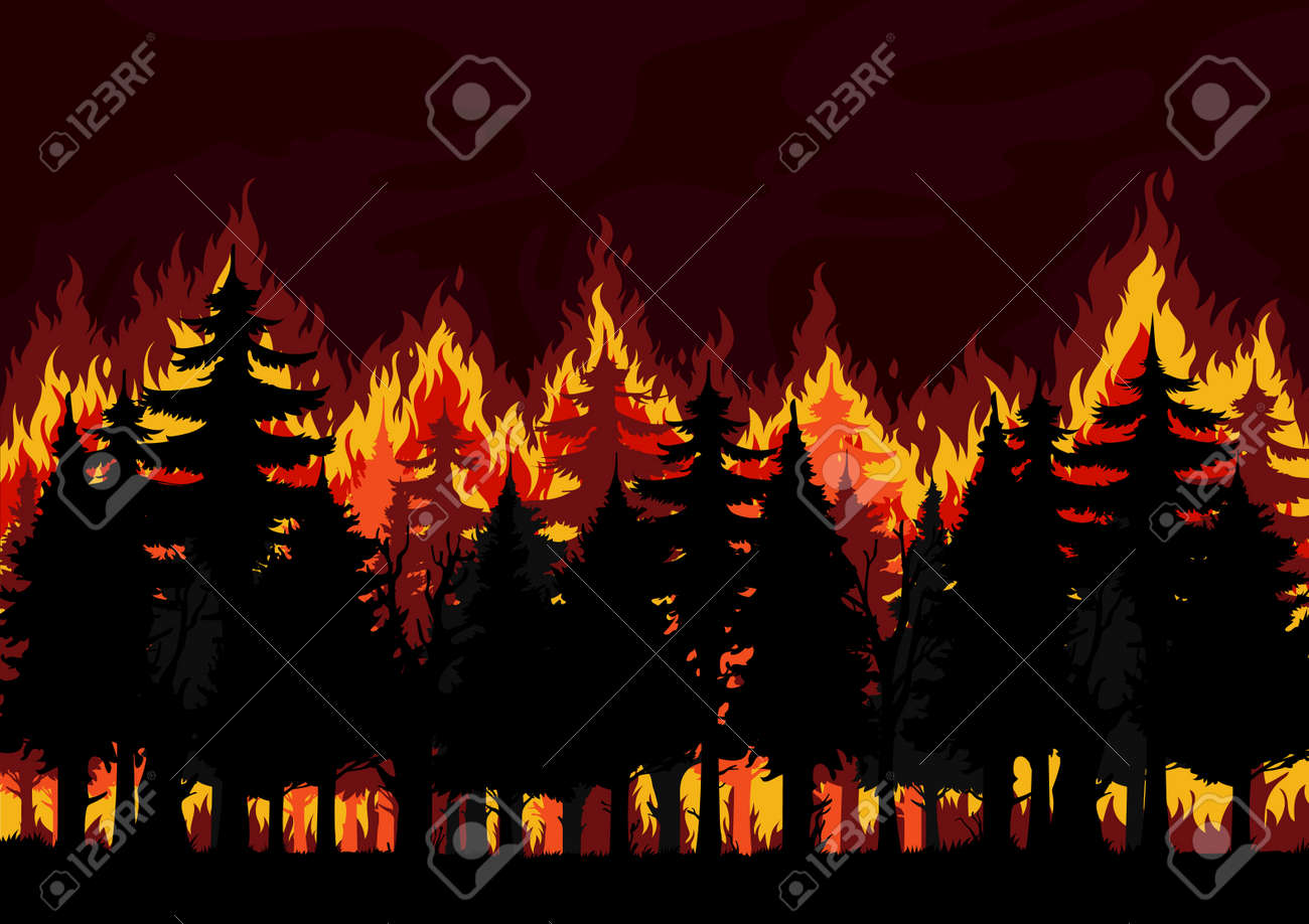 Forest fire background, burning spruce, pine trees vector silhouettes. Natural disaster, ecological catastrophe and environment pollution, climate changes and global warming problem backdrop - 168066765