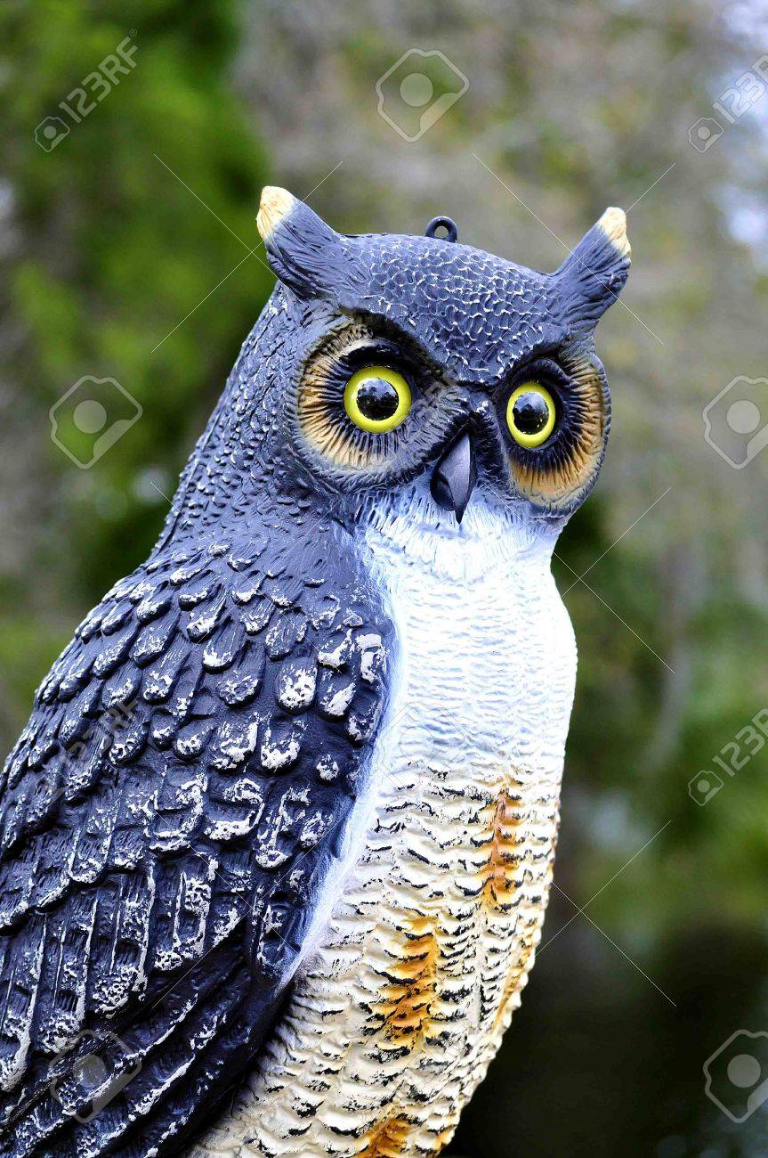 Owl lawn ornaments - Owl Lawn Ornament Stock Photo 9481865