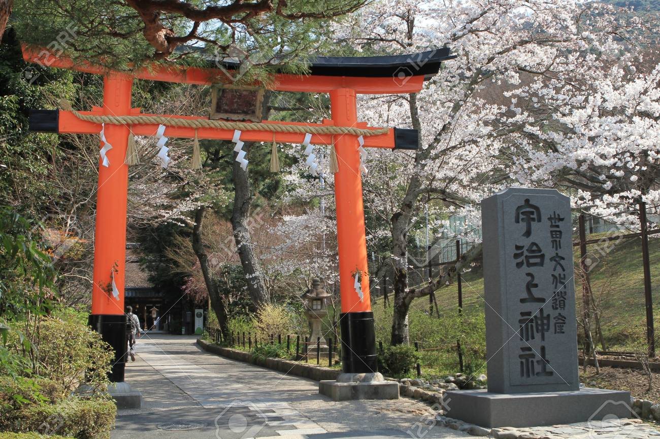 Sakura Stock Photo - 17950342