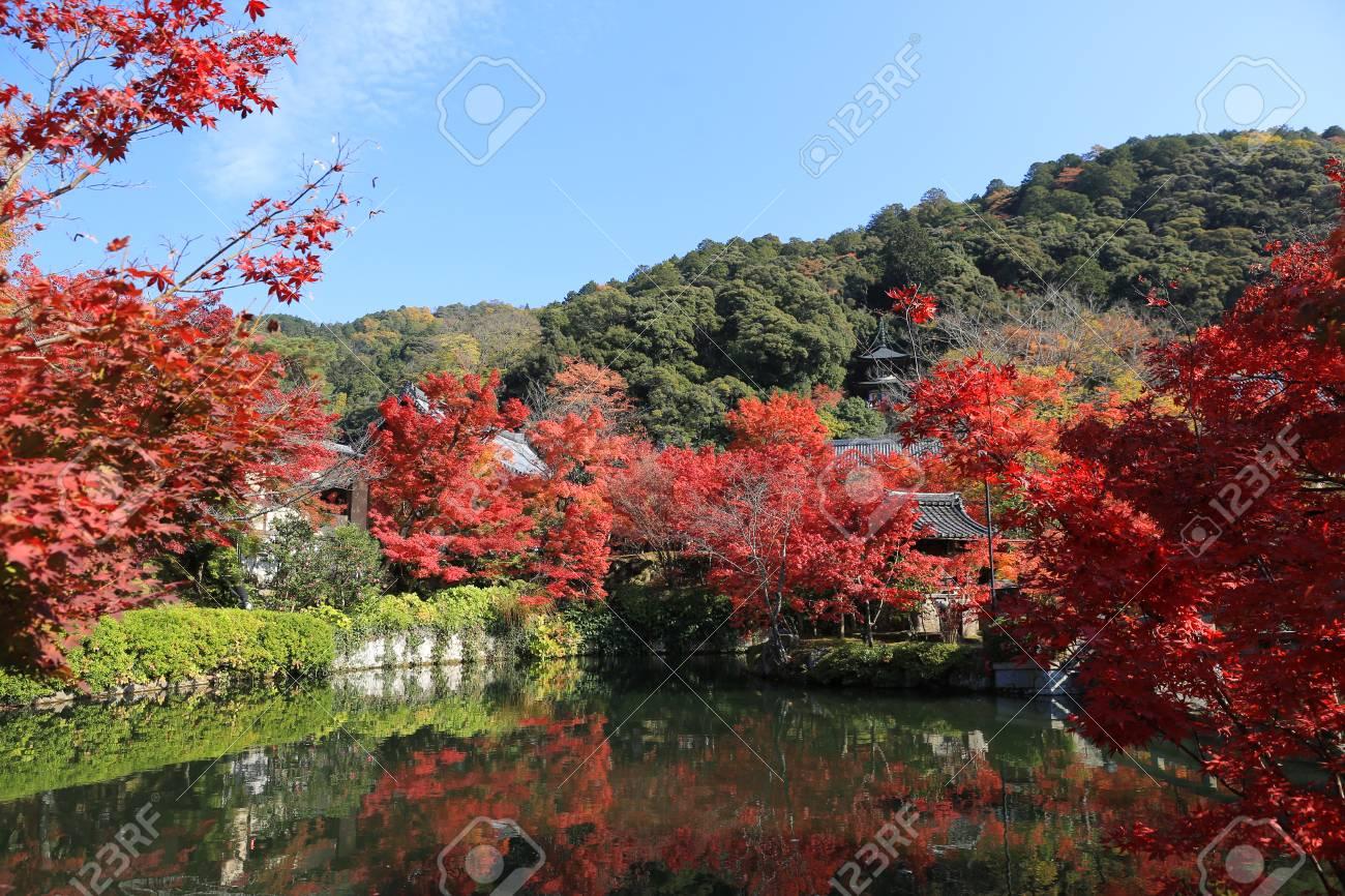 日本禅林寺永観の庭寺の秋、京都...