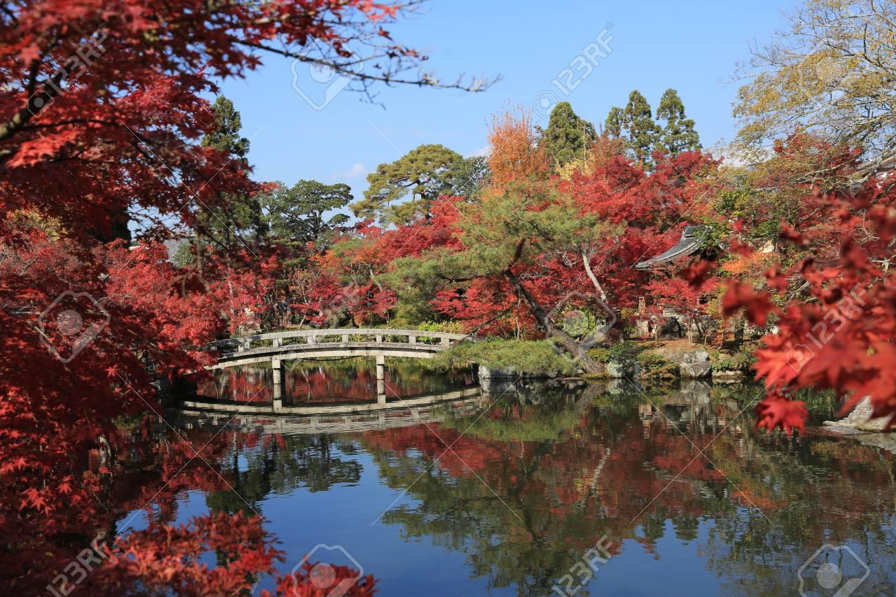 Jardin Japonais Du Temple De Eikando Zenrinji A L Automne Kyoto