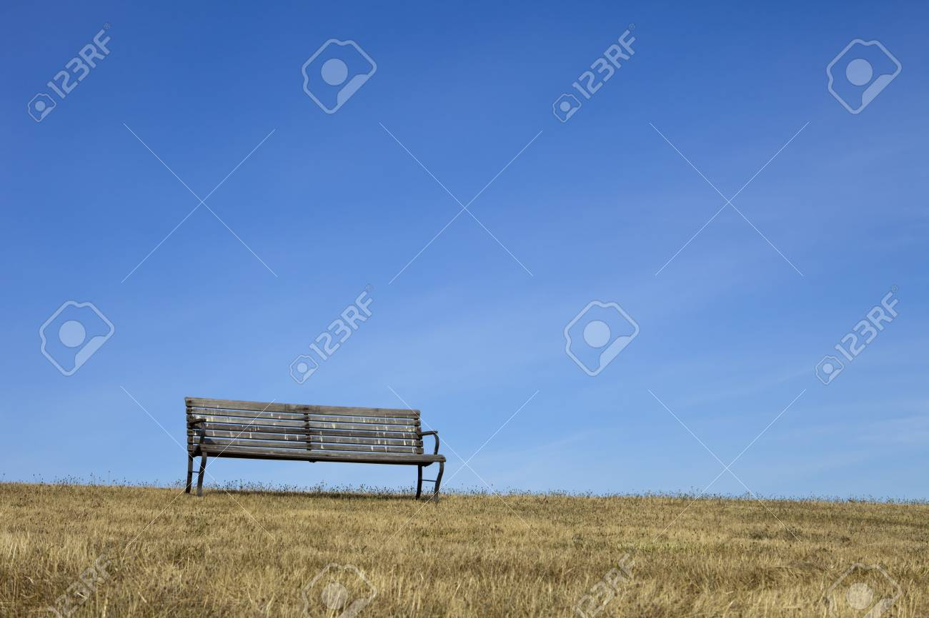 Super An Empty Park Bench Made Of Wood On Dry Grass Is Outlined Against Ibusinesslaw Wood Chair Design Ideas Ibusinesslaworg