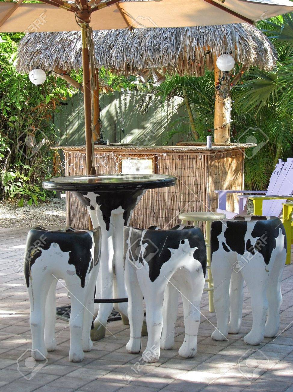 Outside Bar Cow Pattern Painted Stools At Outside Bar Stock Photo Picture And