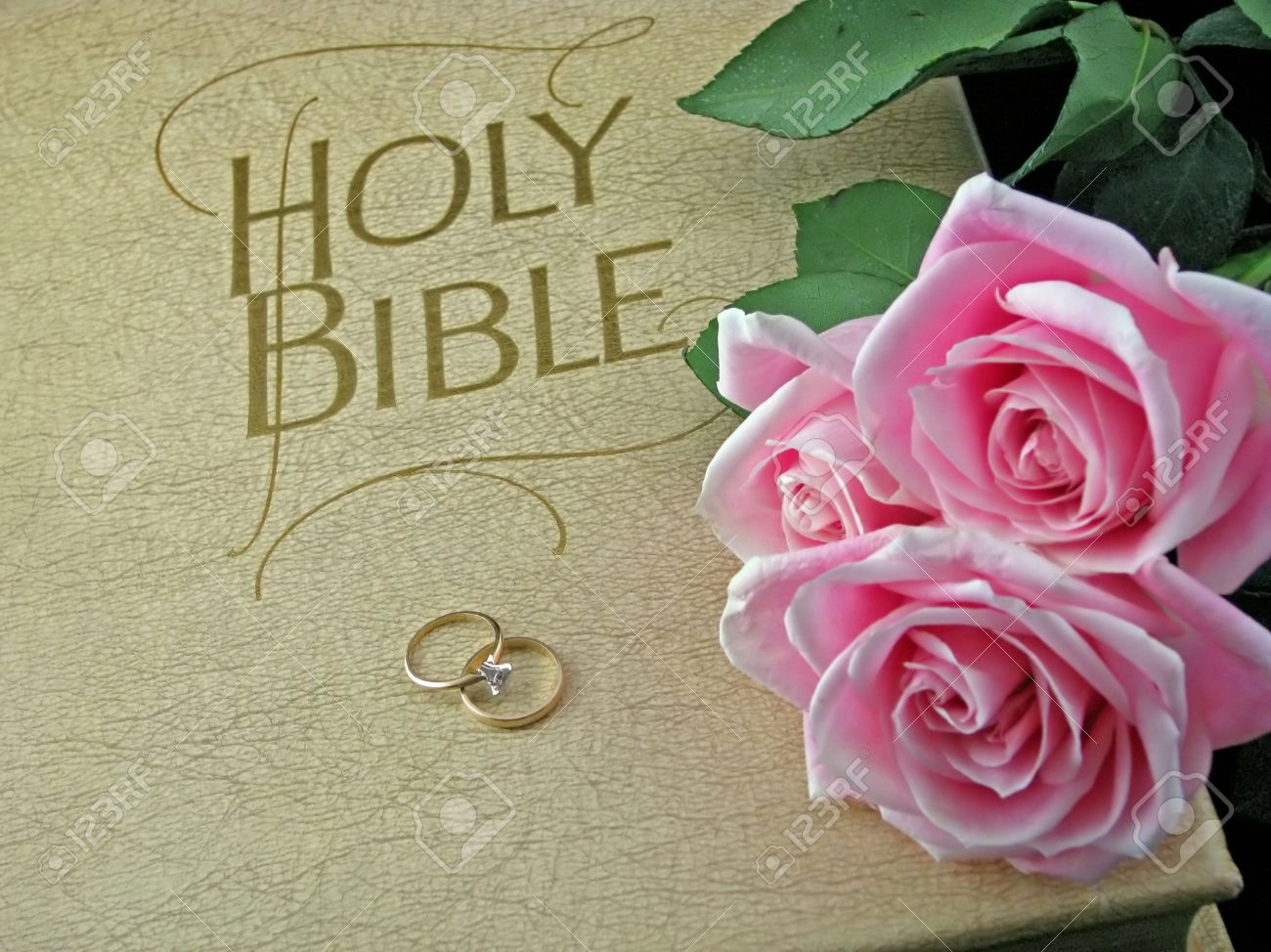 Pink Roses And Wedding Rings On The Bible Stock Photo Picture And
