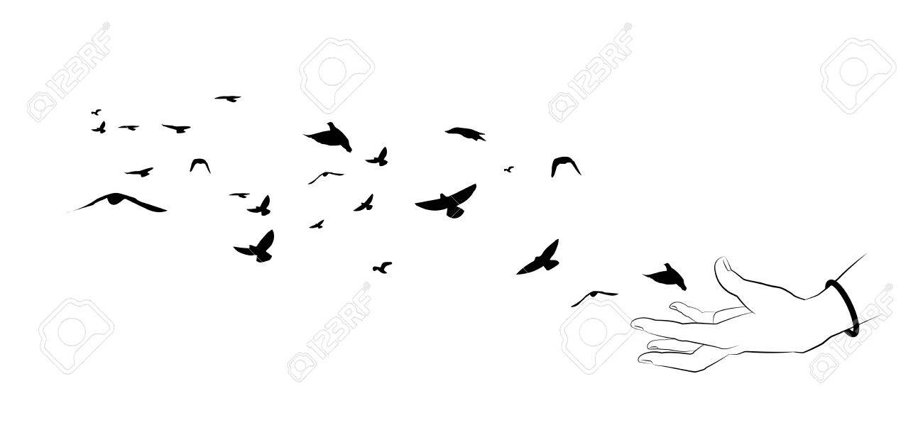 Flying Birds And Hand Silhouettes On White Background. Vector ...