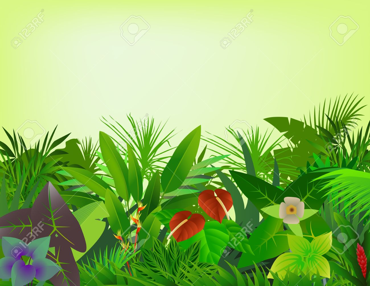 beautiful forest background Stock Vector - 12542834