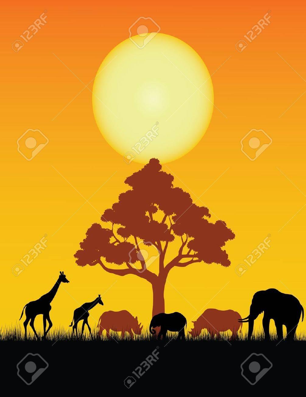 wild animal silhouette Stock Vector - 12544979