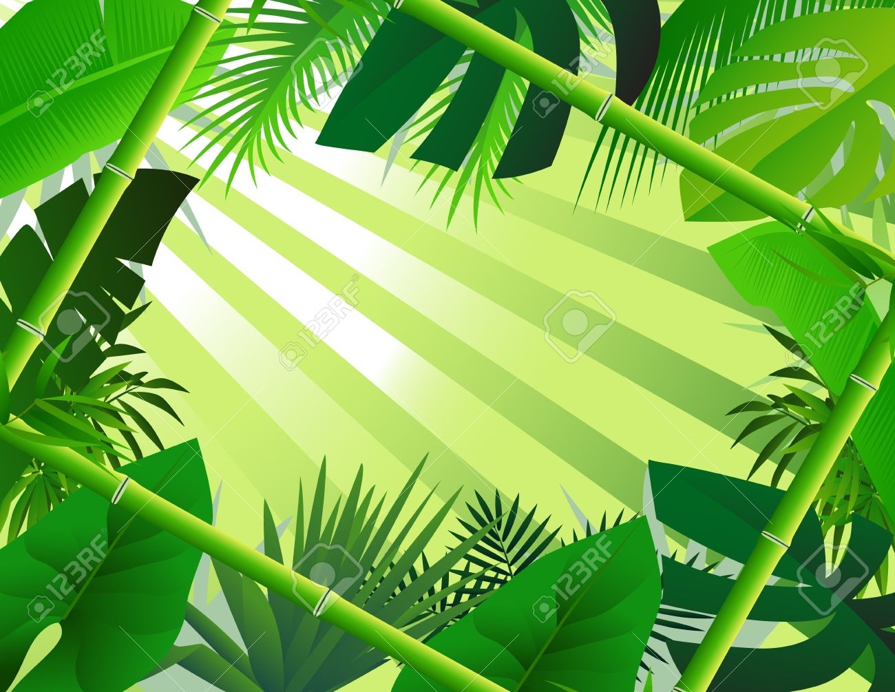 beautiful forest background with bamboo frame Stock Vector - 13864781