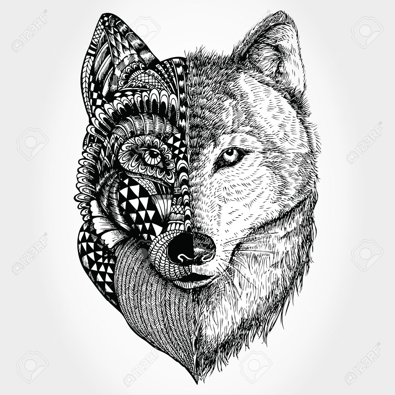 Hand Drawn Wolf Head Stylized Royalty Free Cliparts, Vectors, And ...