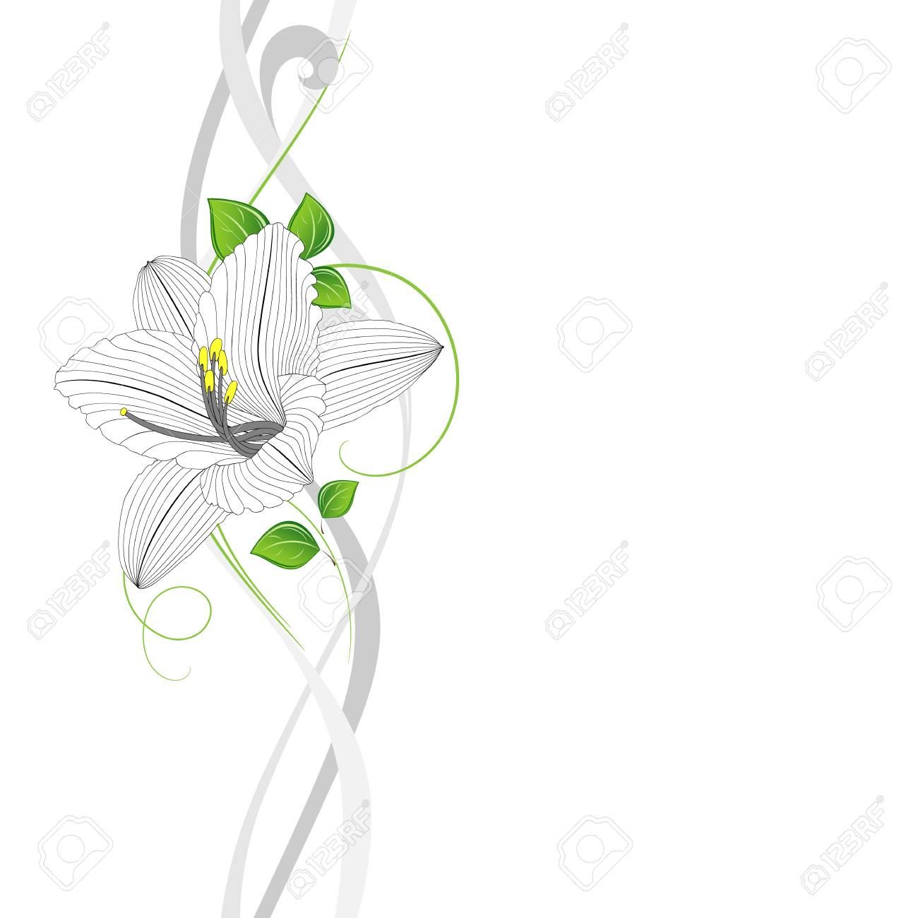 Seamless hand drawing floral background with flower lily royalty seamless hand drawing floral background with flower lily stock vector 73376385 izmirmasajfo