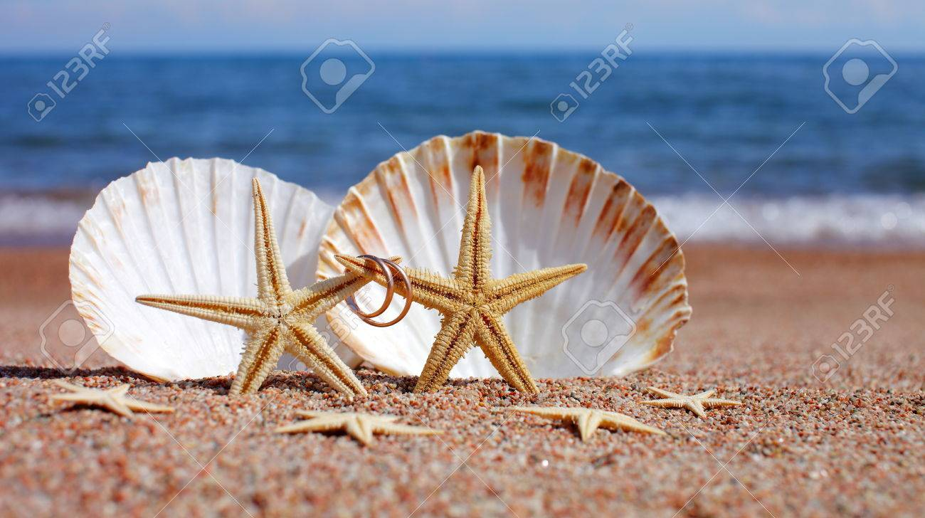 beach starfish rings tips shell ring holders pagespeed wedding ic pillow