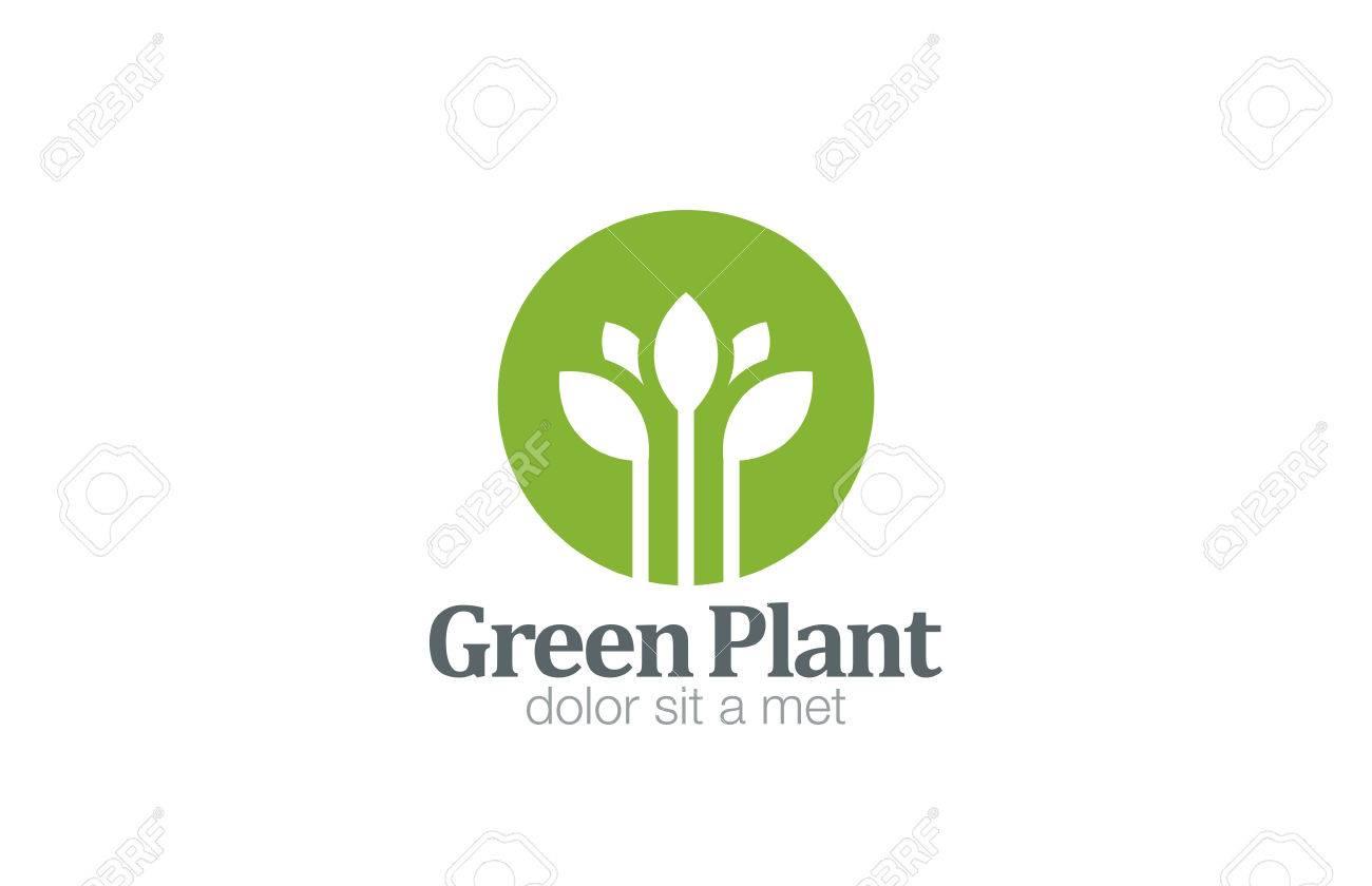 Grüne Pflanze Blume-Design-Vorlage. Lizenzfrei Nutzbare ...