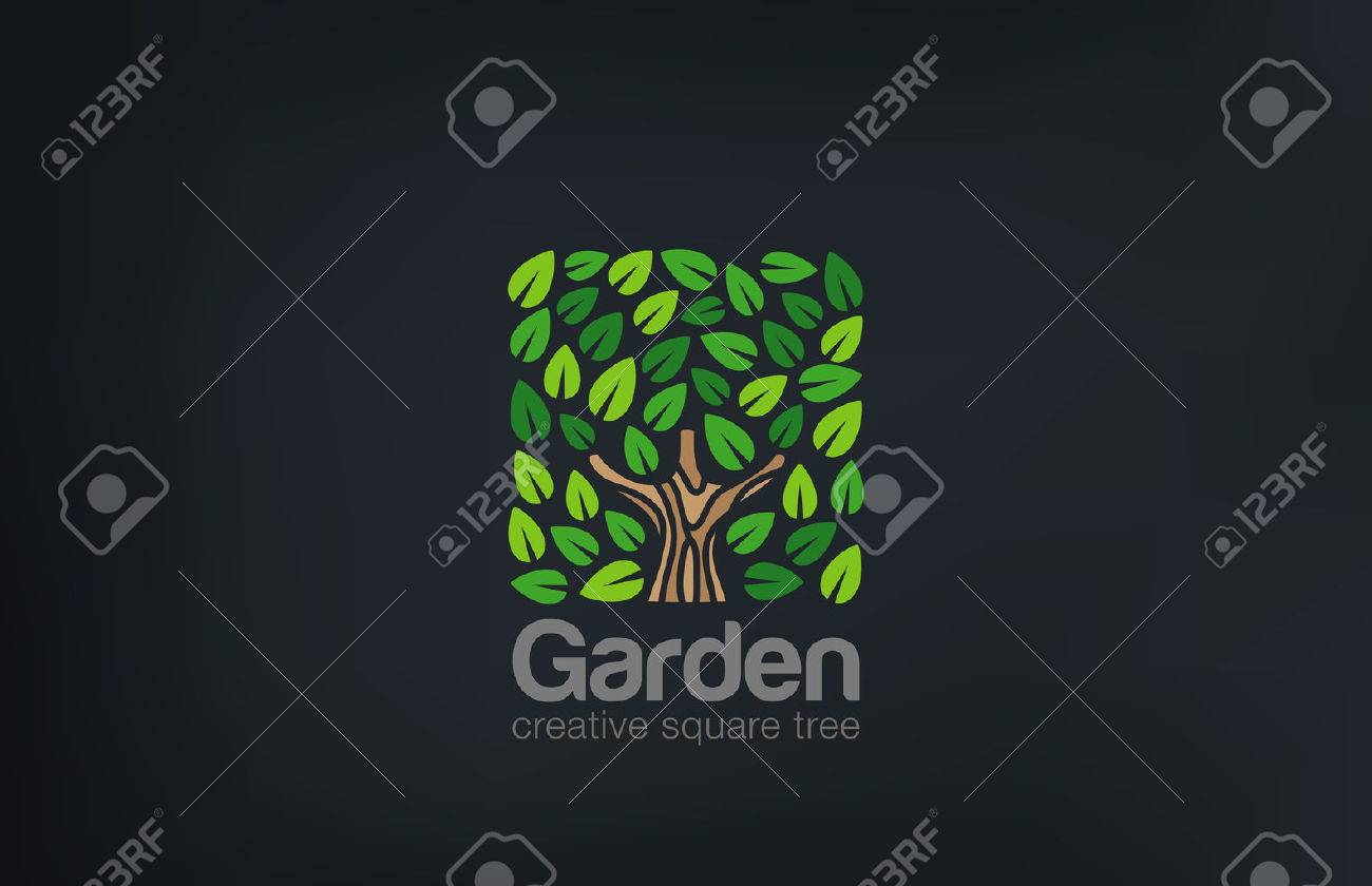 Abstract Green Tree Logo Square Shape Design Vector Template