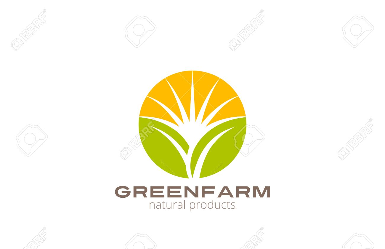 sun over abstract plant logo farm design vector template circle