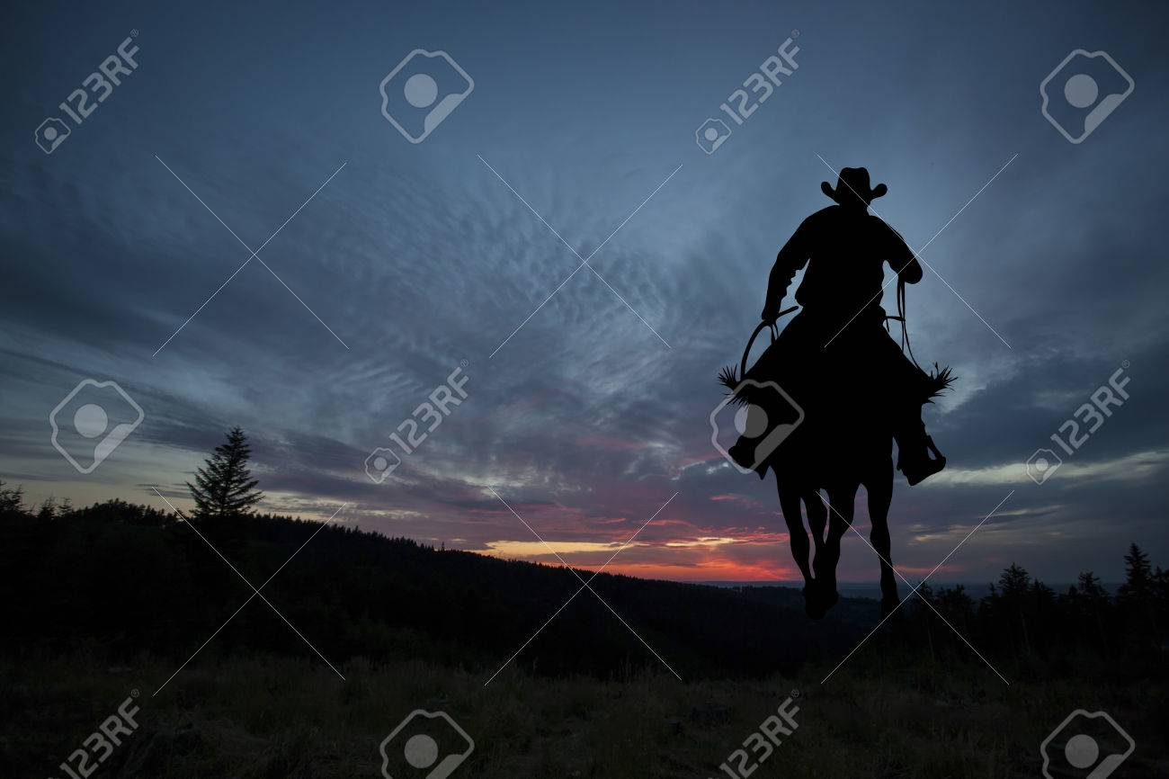 Cowboy silhouette on a horse during nice sunset - 64320404