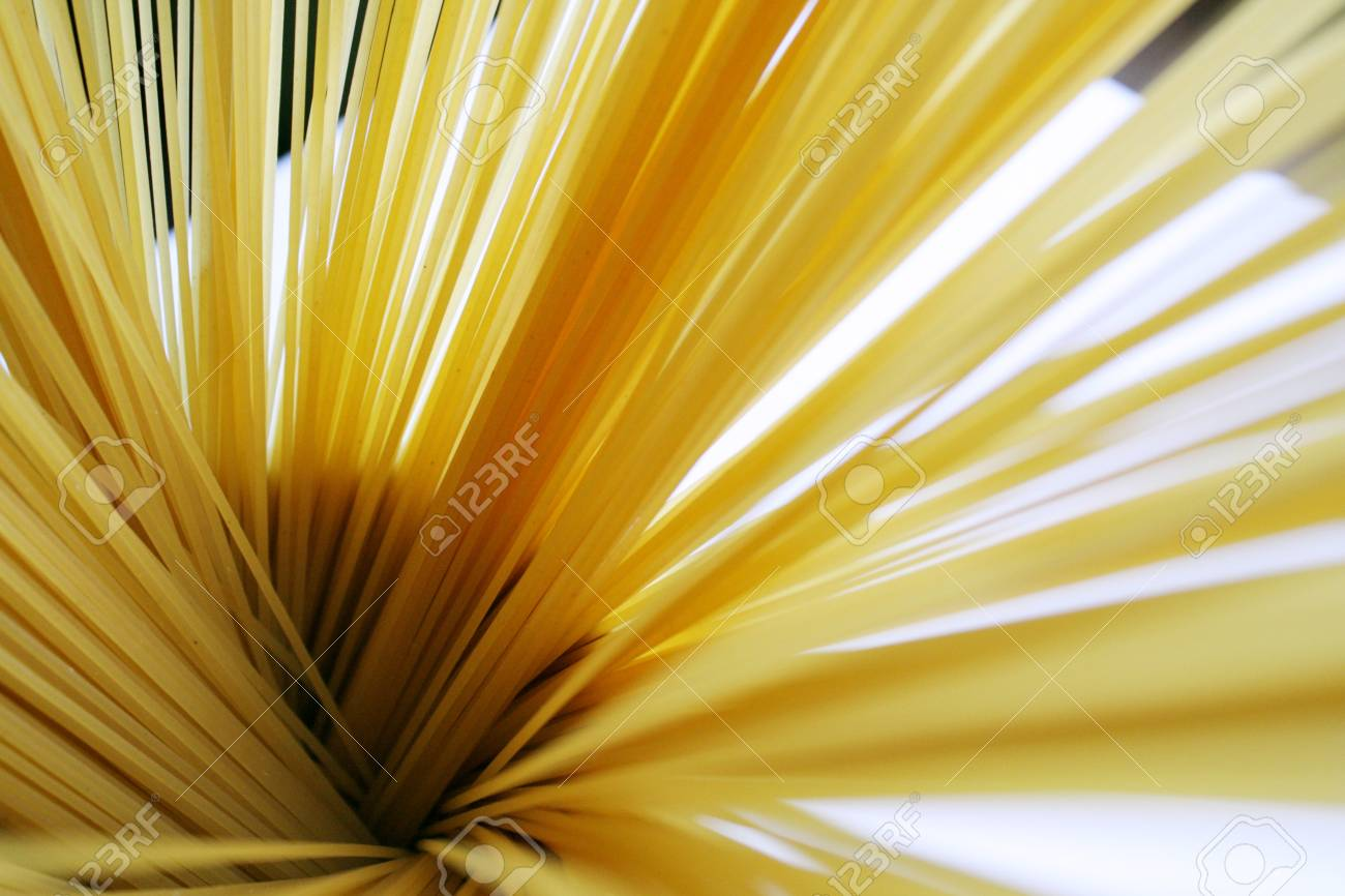 Photo of spaghetti in a oblique circular position from above Stock Photo - 12544782