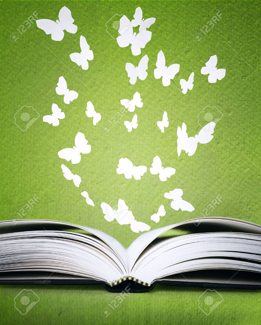 An opened book with stylized butterflies above on a green background texture - 15121217