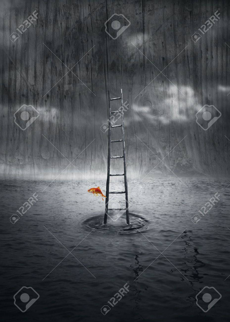 Fantasy background with a wooden ladder out of the water and a colored fish that jump out in a dramatic environment in black and white - 15441178