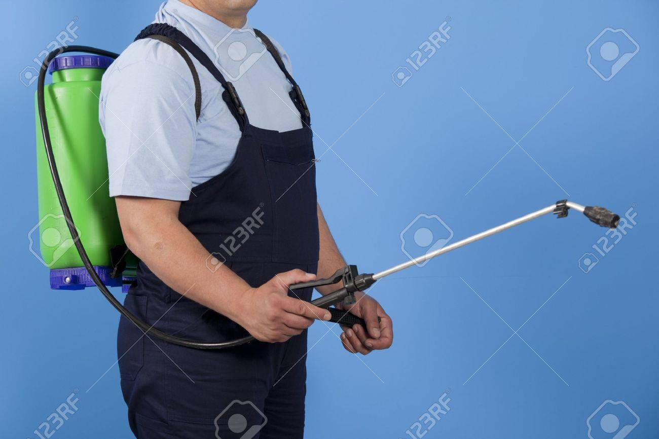 Man spraying insects- pest control Stock Photo - 13478964