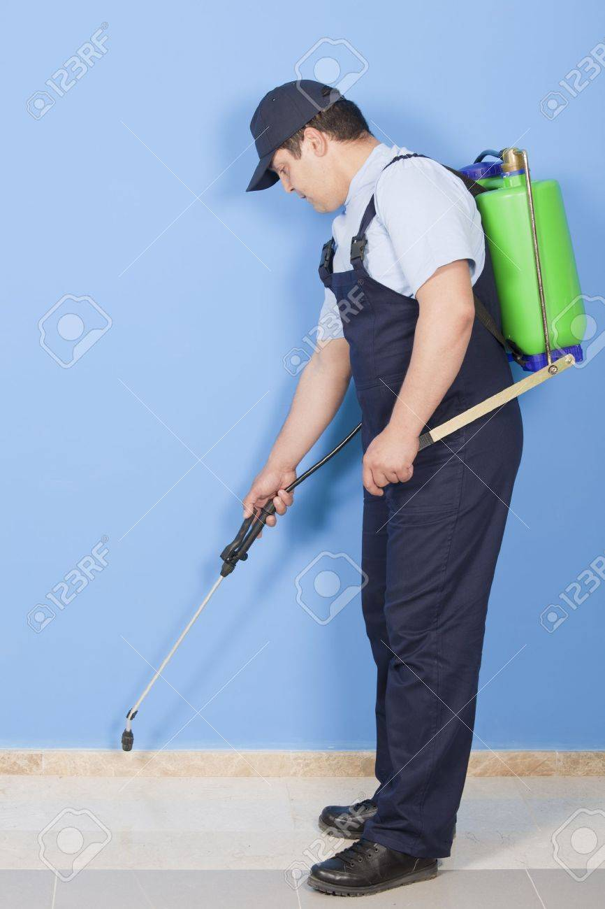 Man spraying insects- pest control Stock Photo - 14718585
