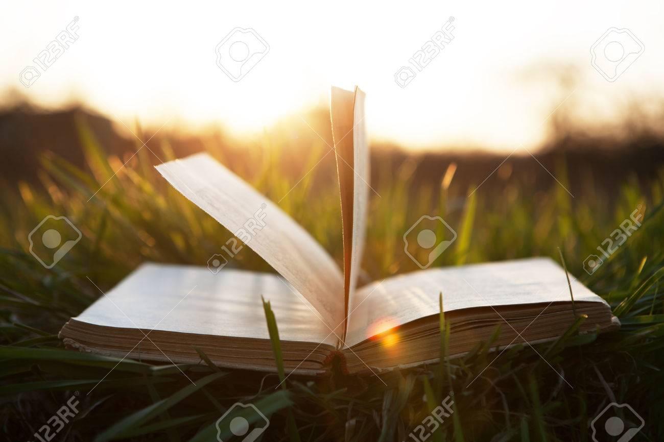 book on grass under the sun - 50032473