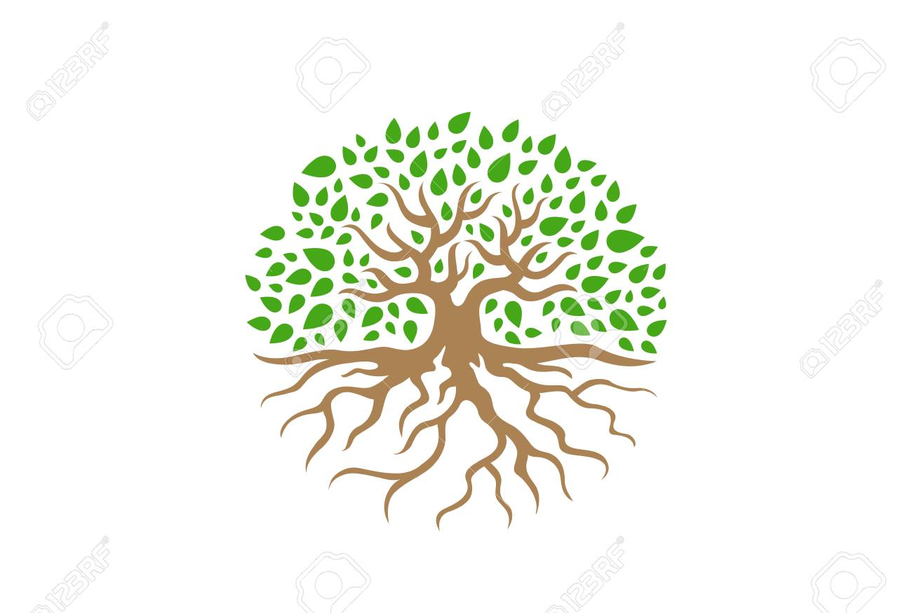 Circle Tree with Roots vector Illustration. Garden concept icon - 93132023