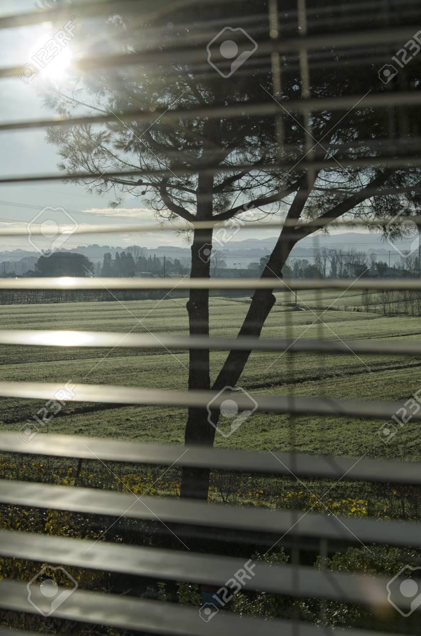 italian countryside seen through the persian blinds stock photo