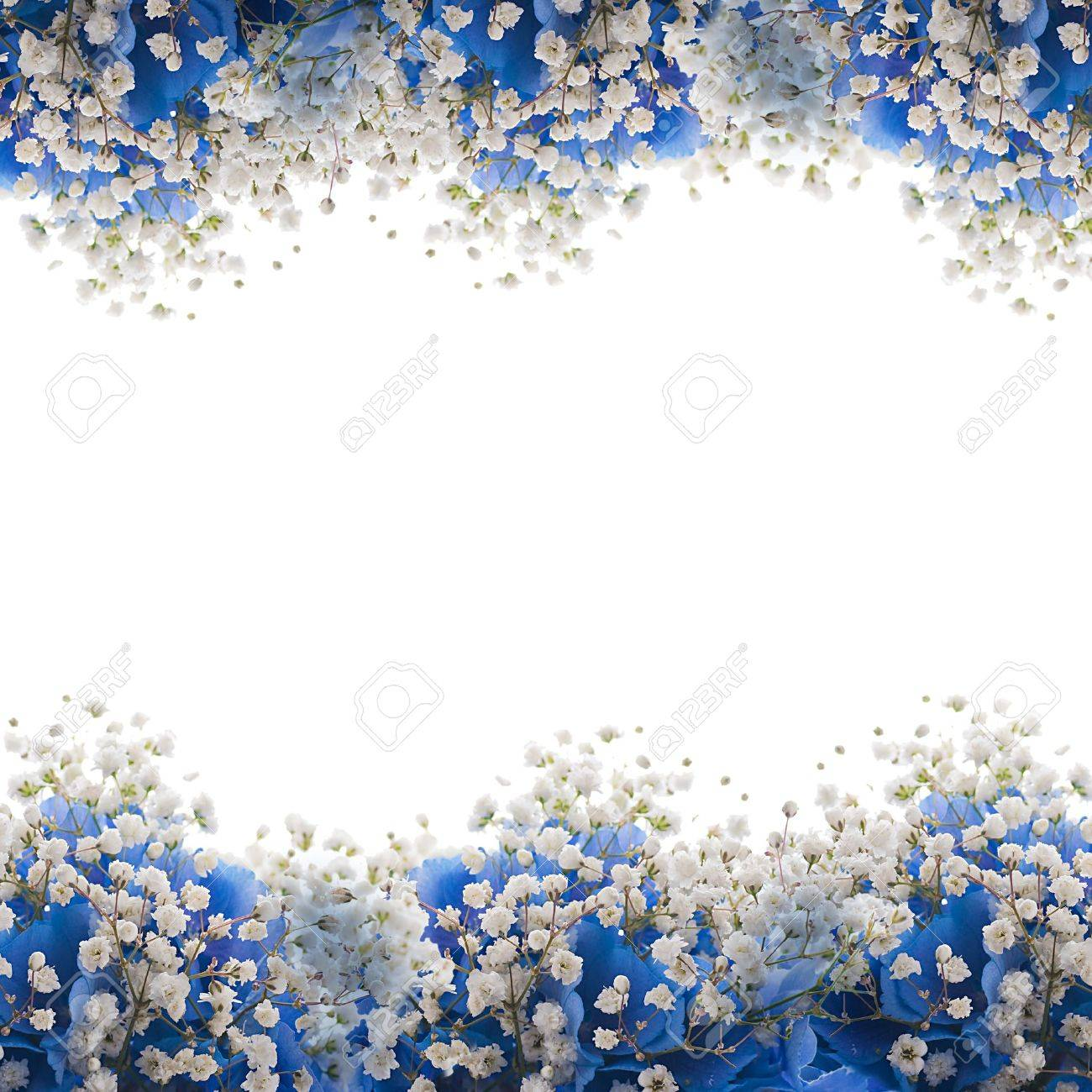 Flowers in a bouquet blue hydrangeas and white flowers stock photo flowers in a bouquet blue hydrangeas and white flowers stock photo 15553299 mightylinksfo