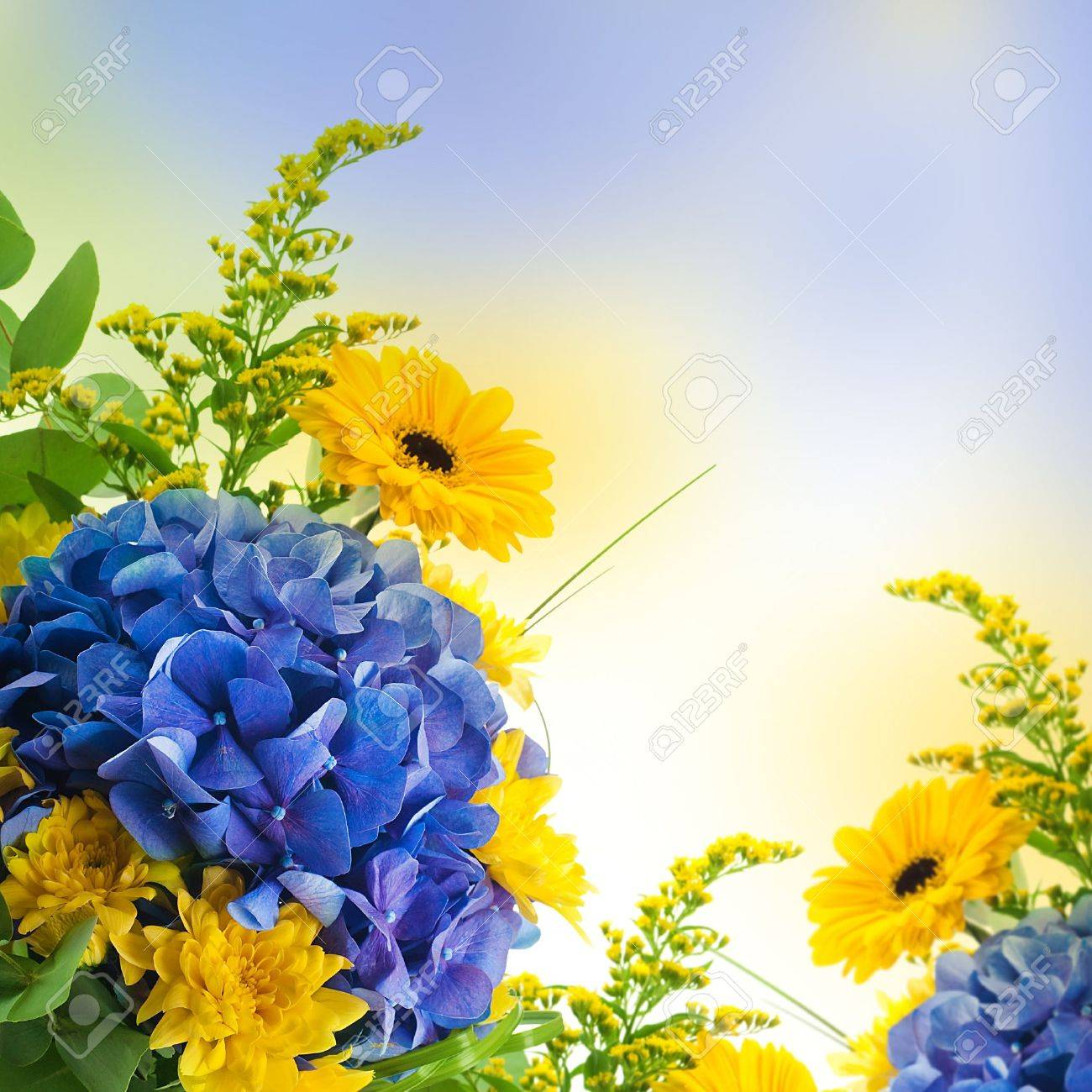 24+ Yellow Flower Background Images