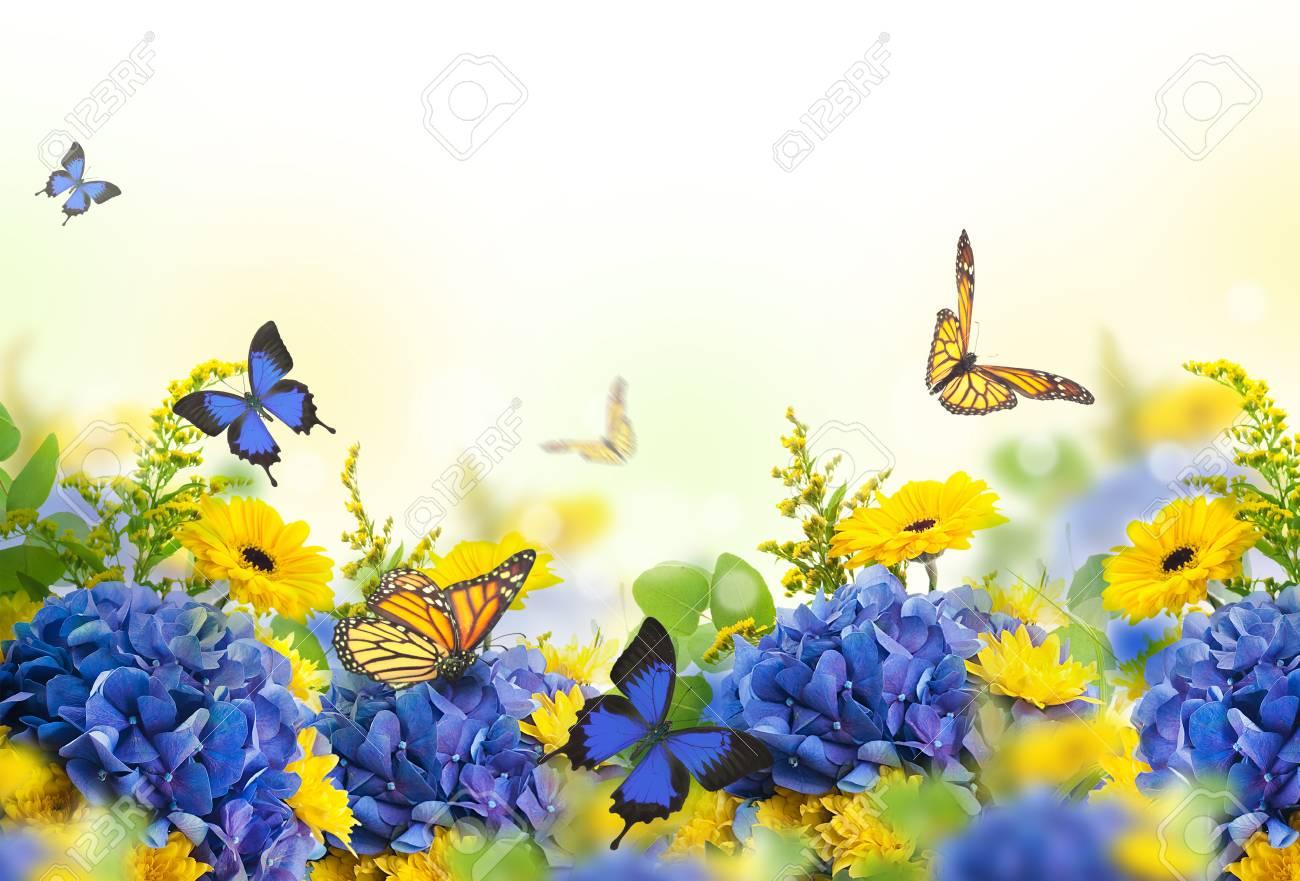 Amazing background with hydrangeas and daisies yellow and blue amazing background with hydrangeas and daisies yellow and blue flowers on a white blank izmirmasajfo