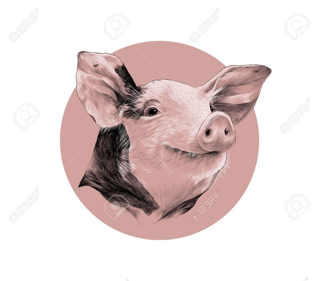 El Diseño Creativo De Una Cabeza De Color Rosa De Cerdo Manchado ...