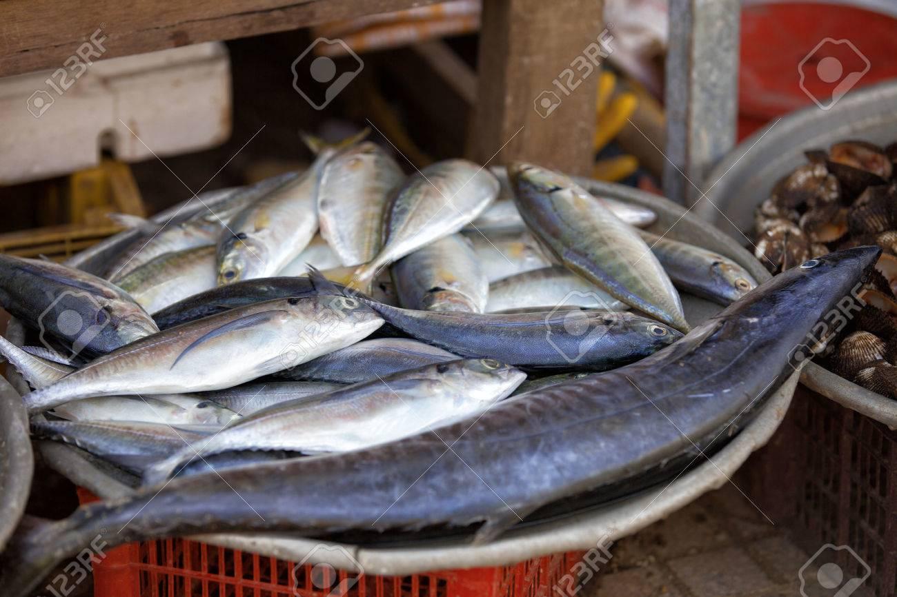 Traditional asian fish market stall full of fresh fish