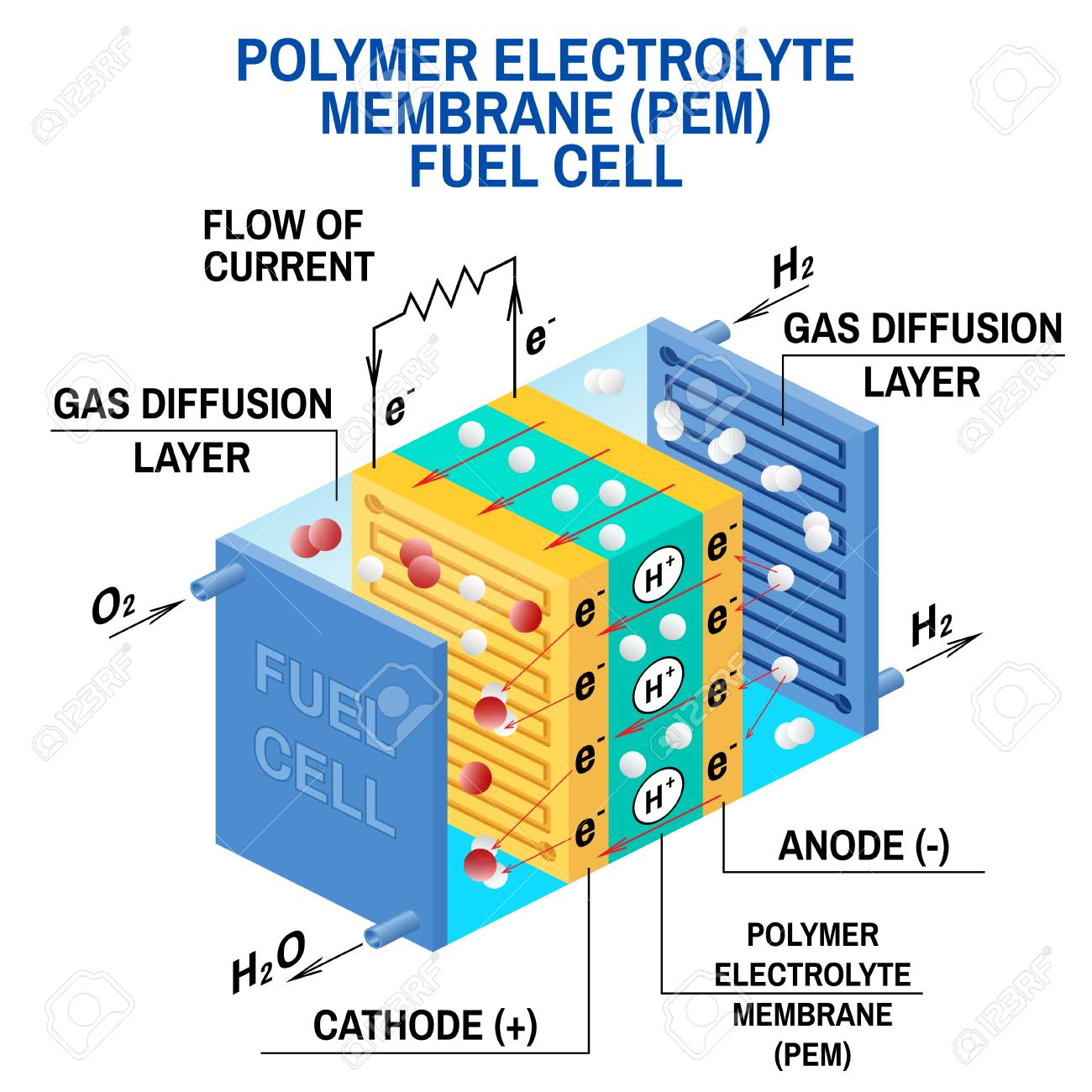 Fuel cell diagram  Vector  Device that converts chemical potential