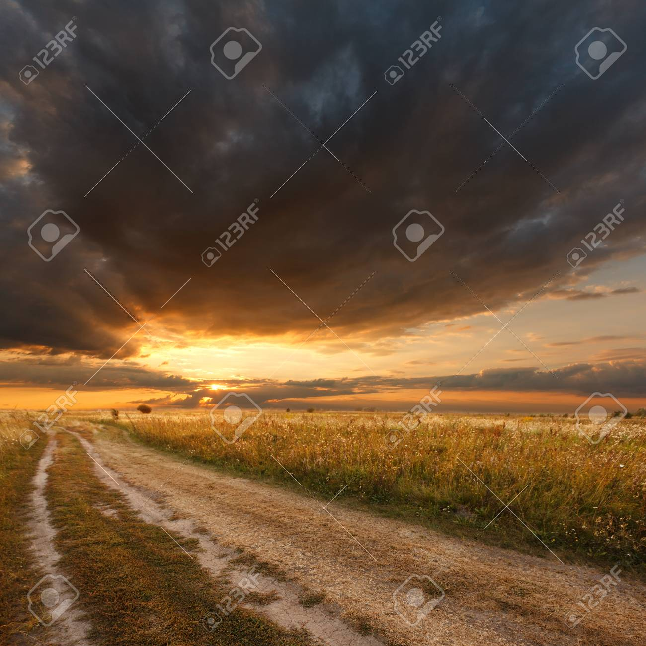 Beautiful view of the sunset in a field on a rural road Stock Photo - 15206561