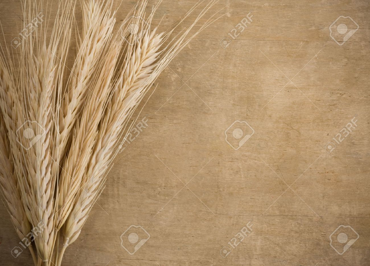 wheat border spike on wood texture background Stock Photo - 12042239