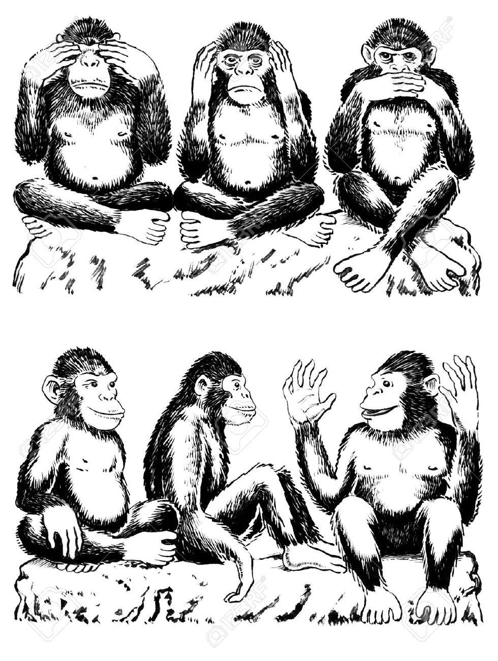Schwarz Und Weiß-Illustration Der Drei Affen Acting Out Berühmten ...