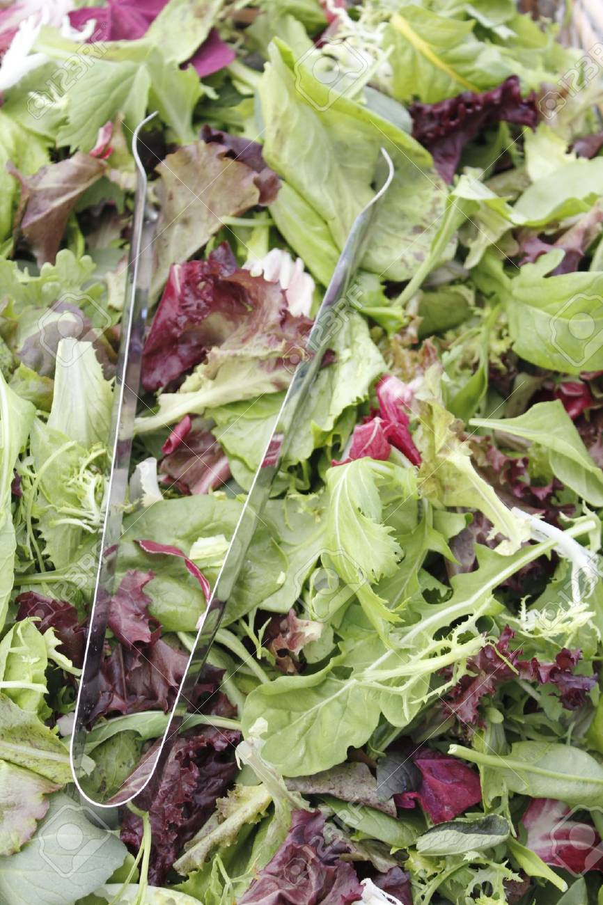 A bin of fresh mesclun salad mix for sale at an outdoor market. Stock Photo - 7503901