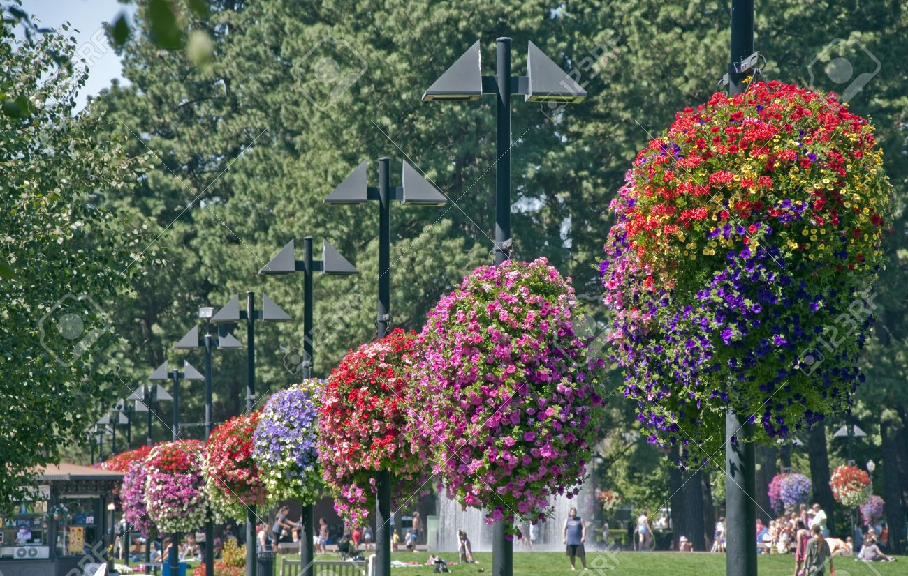 BEAVERTON, OREGON - AUGUST 12: Vibrant hanging flower baskets and lots of people hang out on August 12, 2010 in Beaverton, Oregon. Beaverton was named one of top 100 walking cities in America by Prevention magazine.  Stock Photo - 12142834