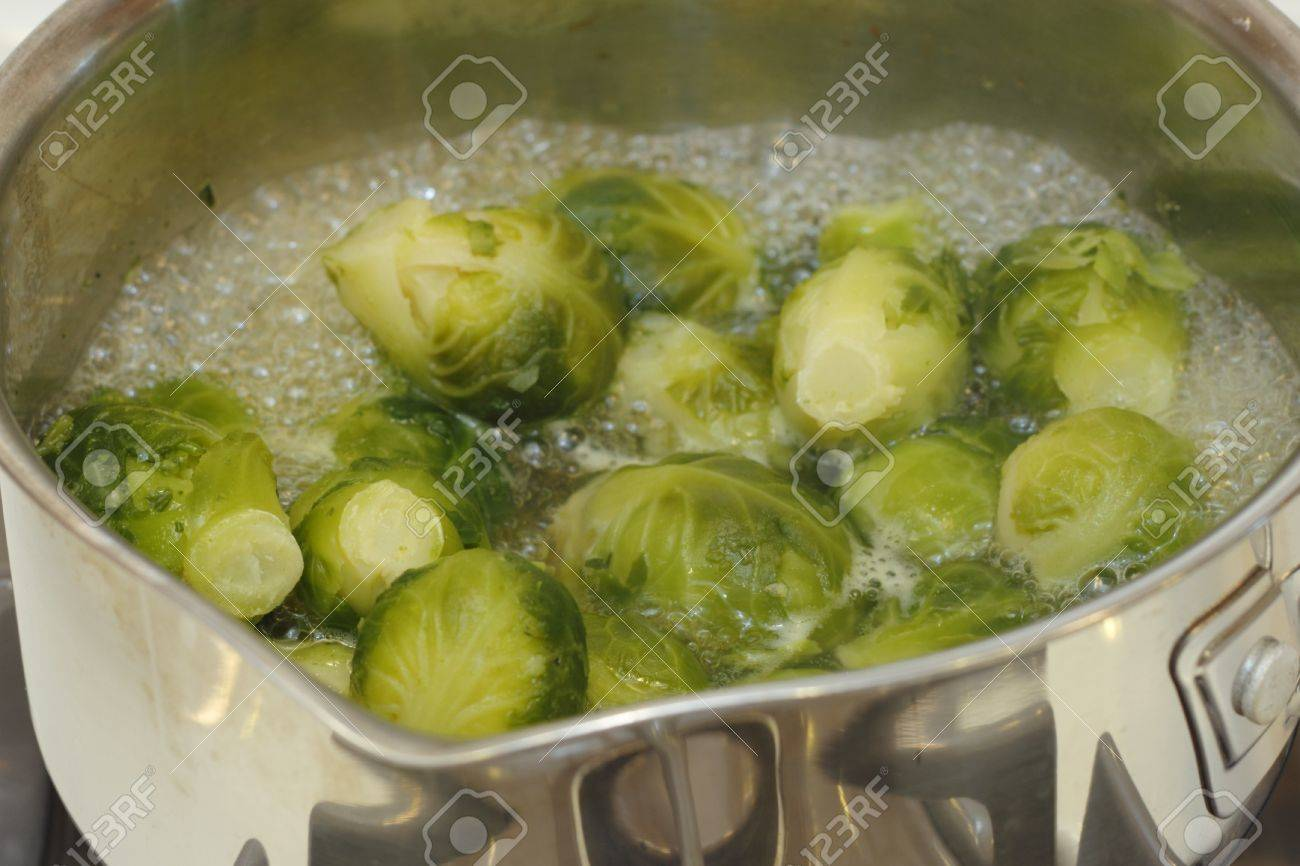 Close up of small cabbages called brussels sprouts boiling in some water in a small stainless steel saucepan on a stove Stock Photo - 16431811