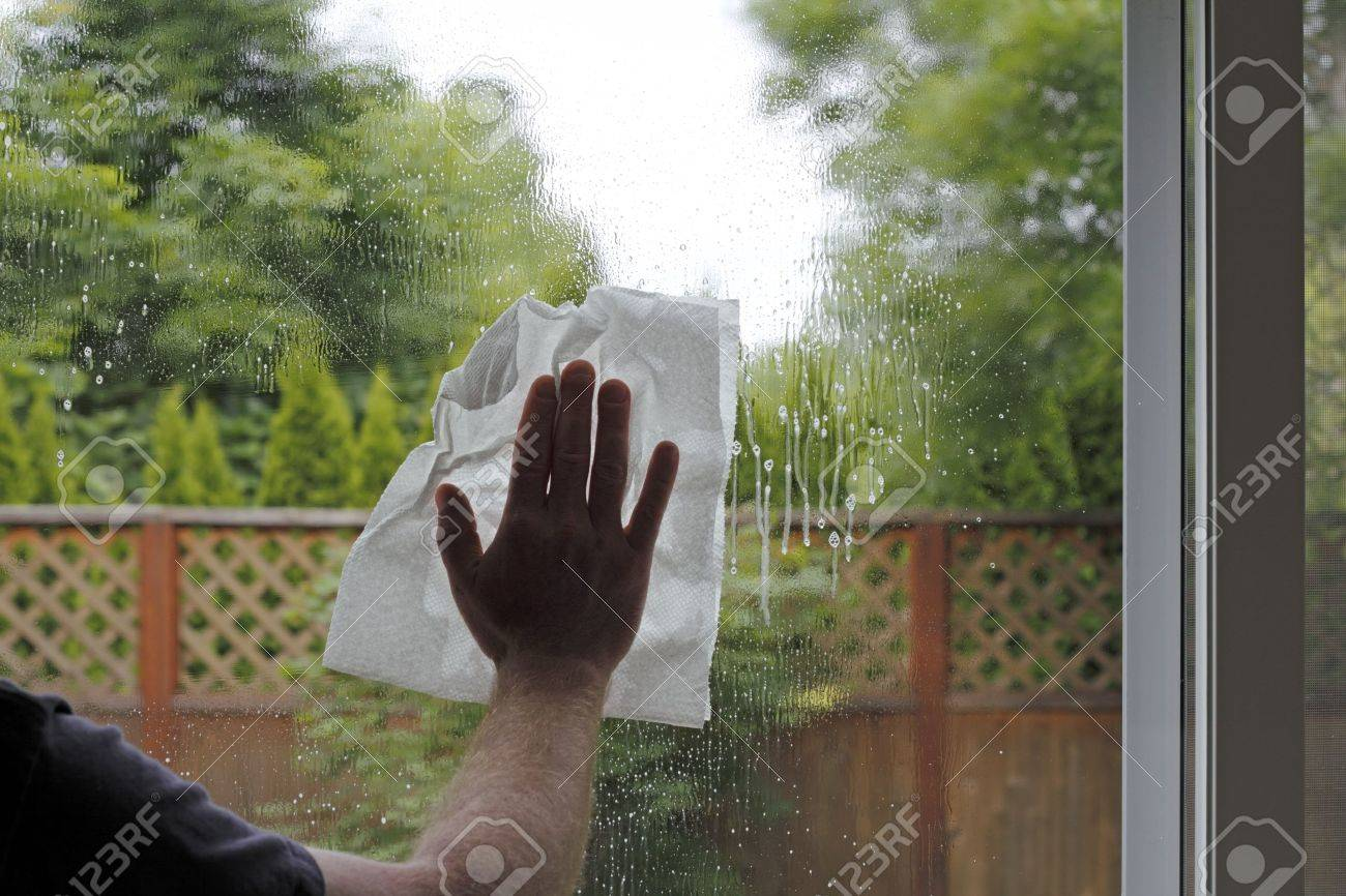 Having sprayed window cleaning fluid on the glass, a hand of a man is seen washing a sliding glass door from inside a home with a view of the green foliage backyard Stock Photo - 16431818