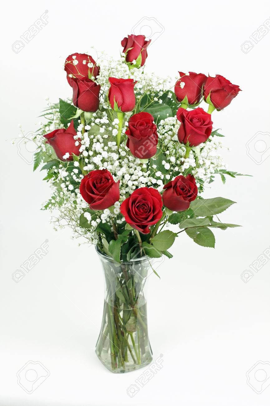 One red roses flower arrangement with its leaves and white babies one red roses flower arrangement with its leaves and white babies breath blossoms in a clear mightylinksfo