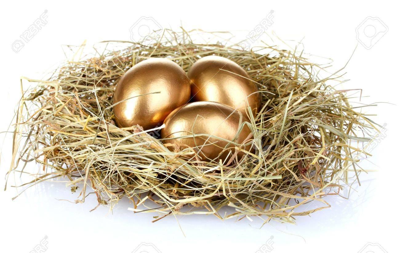 golden eggs in nest isolated on white Stock Photo - 10228293