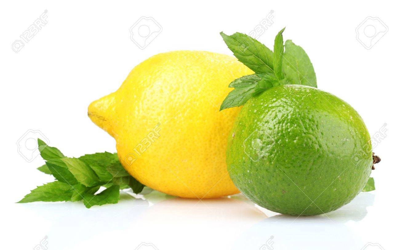 fresh lime, lemon and mint isolated on white Stock Photo - 10383430