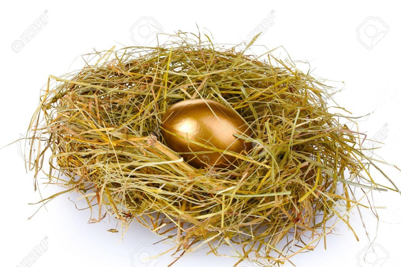 golden eggs in nest isolated on white Stock Photo - 10438311