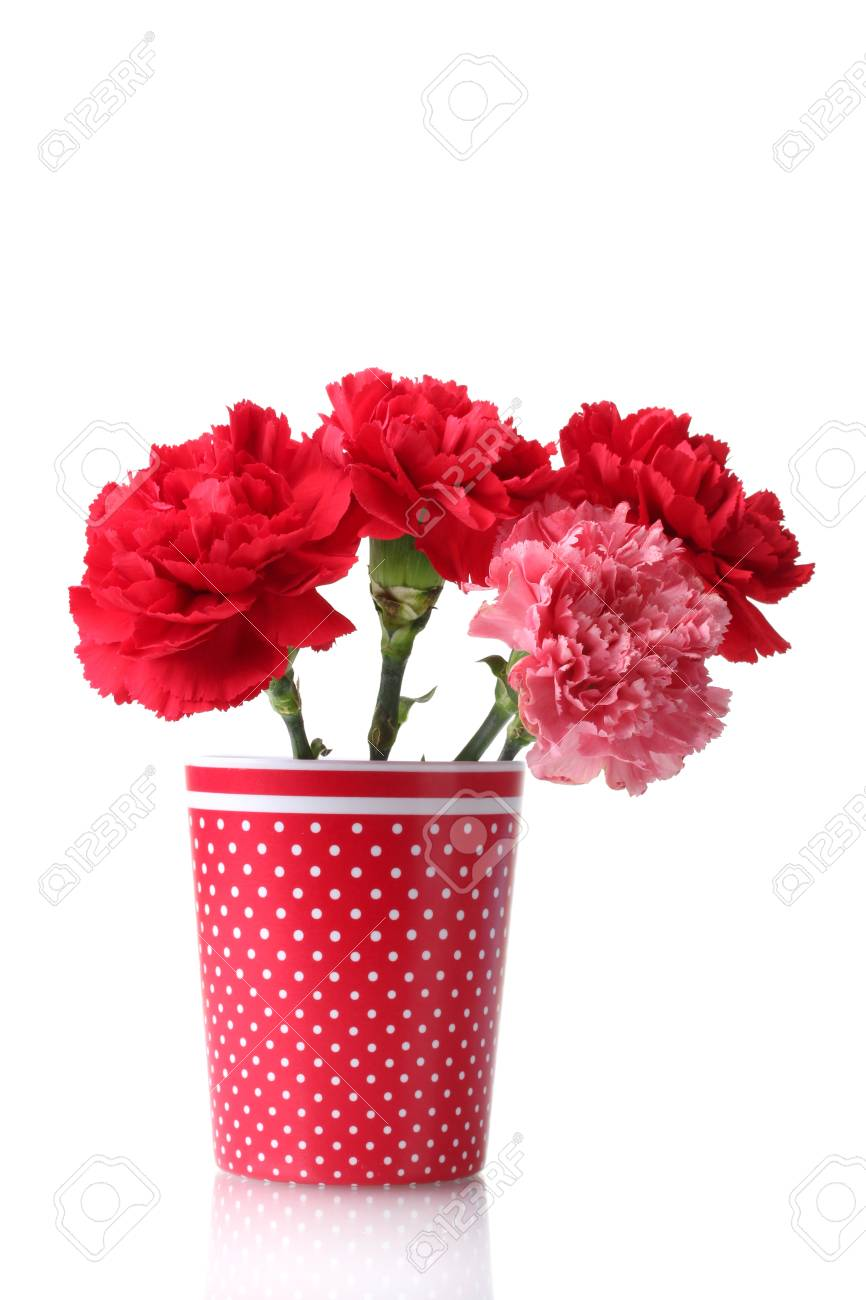 Bouquet of carnations in a glass isolated on white Stock Photo - 12020528