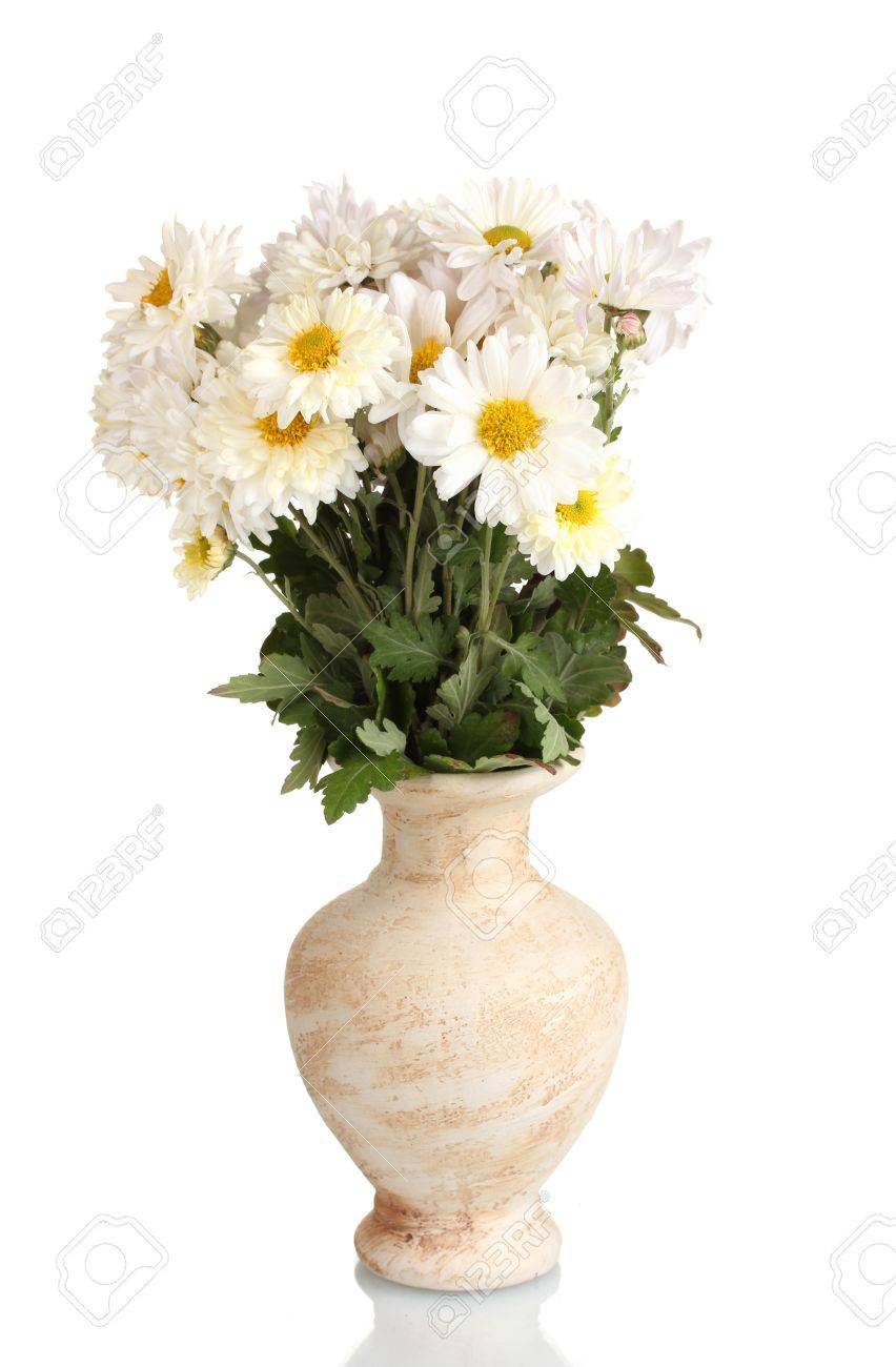 Beautiful bouquet of daisies in vase isolated on white stock photo beautiful bouquet of daisies in vase isolated on white stock photo 13083045 reviewsmspy