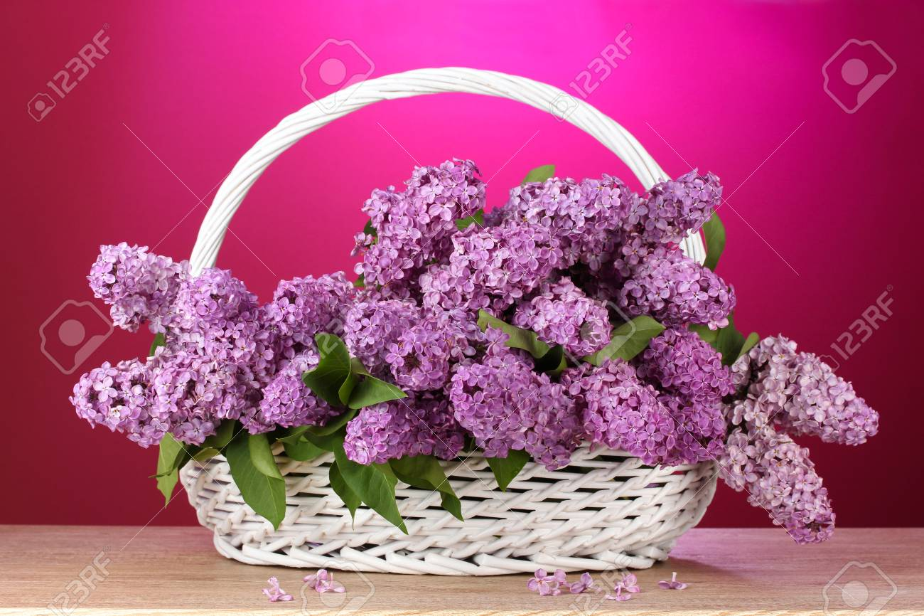 beautiful lilac flowers in basket on red background Stock Photo - 13579991