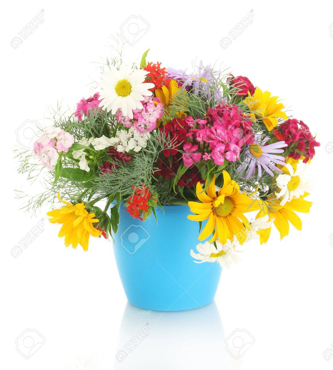 beautiful bouquet of bright  wildflowers in flowerpot, isolated on white Stock Photo - 13941138