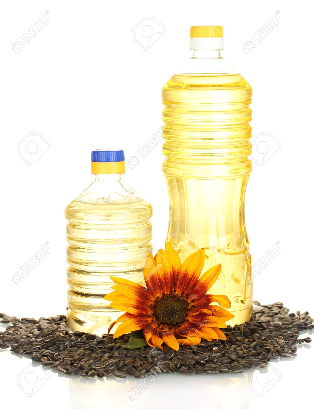 sunflower oil in a plastic bottles isolated on white background Stock Photo - 14170133